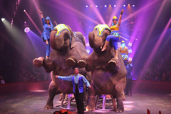 Cirque Arlette Gruss 30 Ans De Num 233 Ros The Fashion